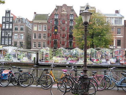marche-fleur-amsterdam